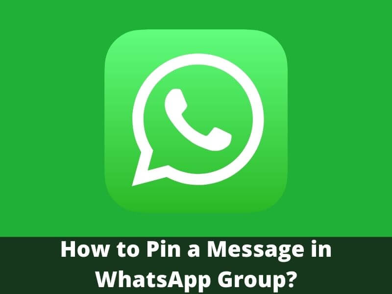 How to Pin a Message in WhatsApp Group